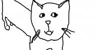 Dessin fait par Le petit chat