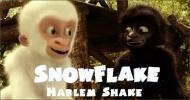 Snowflake danse le Harlem Shake.