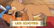 Les coyotes